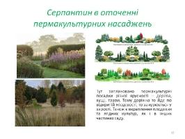 Image00043