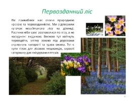 Image00044