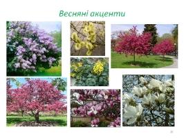 Image00060