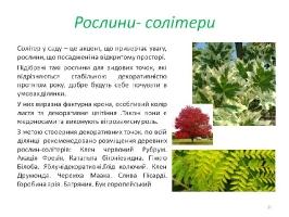 Image00064