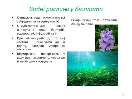 Image00076